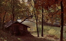 Cabin by the River Postcard