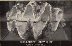 Shellcraft Hobby Shop