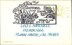 Daffodil Hill Station