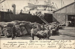 Loading Cotton Postcard