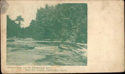 Summer Days on the Skungamaug Rier, Millet Farm Postcard