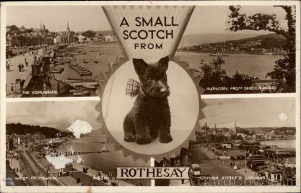 A Small Scotch from Rothesay Scotland