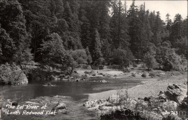 The Eel River Lane's Redwood Flat California
