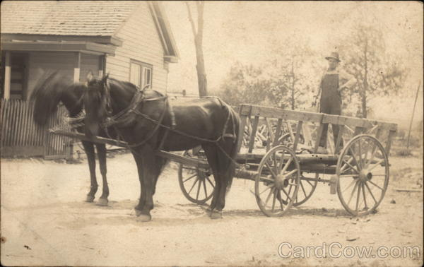 Man Standing in Wagon with Horses