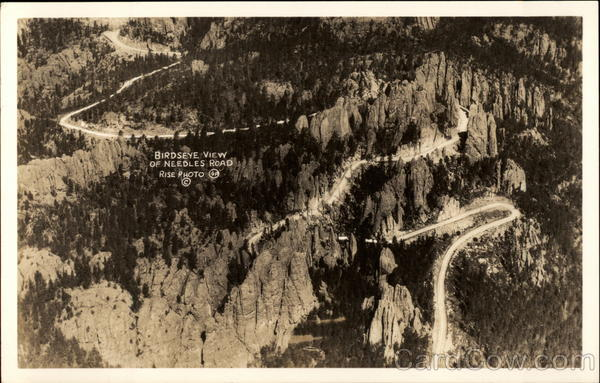 Birdseye View of Needles Road Black Hills South Dakota