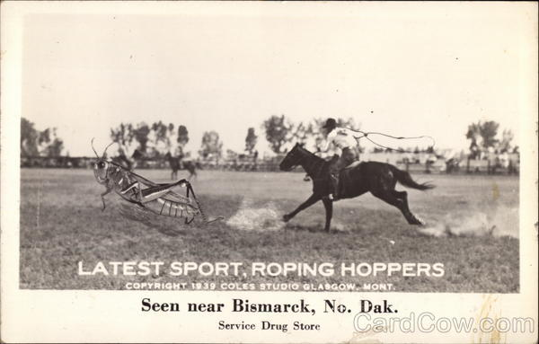 Latest Sport, Roping Hoppers Cowboy Western Exaggeration
