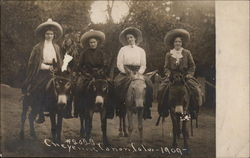 Women on burros at Cheyenne Canon (Park), Colo., 1909 Postcard
