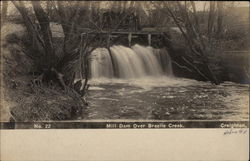 Mill Dam Over Brazile Creek