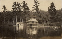 Brantingham Lake View With Trees and Cottage