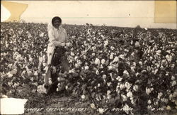 Southwest Cotton Pickers