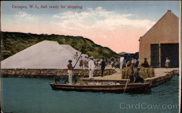 Salt Ready for Shipping Curacao Netherland Antilles