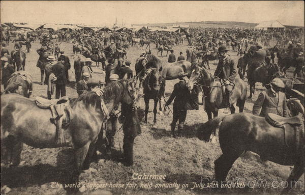 Cahirmee--The world's largest horse fair Buttevant Ireland