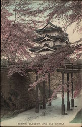 Cherry Blossom and Old Castle