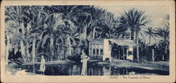 The Fountain of Moses in Suez, Egypt Postcard