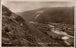 The Stag - Rheidol Valley