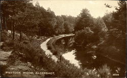 Piestock Wood Postcard