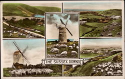 Various Views of the Sussex Downs