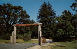 Redwood Camp, Mount Hermon Christian Conference Center