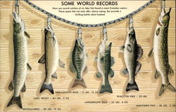 Some World Records