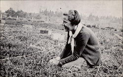 Handpicking cranberries on John Elo's bog in the 30's