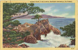 Midway Point, 17 Mile Drive Postcard
