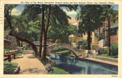 One of the Many Attractive Scenes along the San Antonio River Postcard