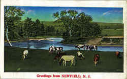 Greetings From Newfield