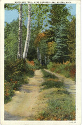 Woodland Trail, Near Hubbard Lake Postcard