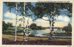 Birches On Silver Lake