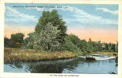 Beautiful Escanaba River