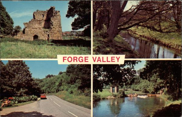 Various Views of the Forge Valley England