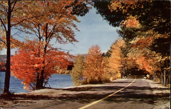 Country Road with Fall Foliage Waterloo Canada Quebec