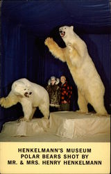 Henkelmann's Museum. Polar Bears Shot by Mr. & Mrs. Henry Henkelmann