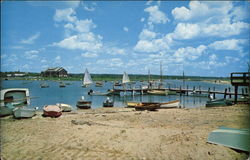 View of Beach and Boats