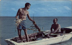Lobstering - Frederiksted Postcard