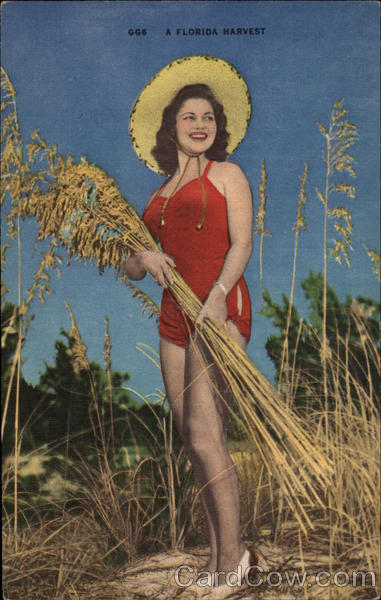A Florida Harvest Swimsuits & Pinup