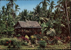 A Typical Philippine Nipa Hut