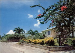 Flowery Residential Area Home, with Tropical Flowers