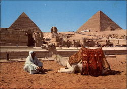 The Sphinx and the Pyramids of Cheops and Chephren Postcard