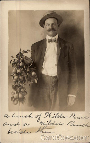 A Bunch of Wilder Pears Being Held by Gentleman Fruit