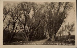 The Willows at Riverdale