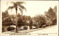 A Lovely View in the Gardens Postcard