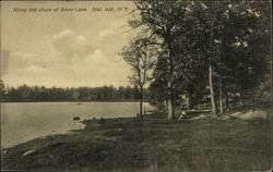 Along the shore of Silver Lake