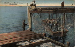A Fish Trap on Hood's Canal, Washington