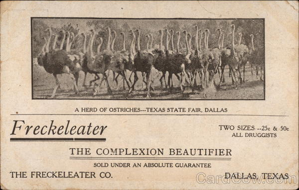 Freckeleater, the complexion beautifier Dallas Texas