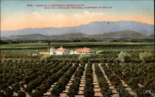 Home in a California Orange Grove