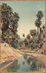 Palm Canyon - Gold Border