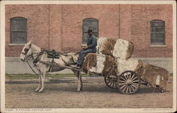 A Typical Cotton Cart