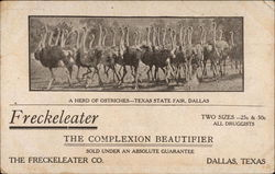 Freckeleater, the complexion beautifier Postcard