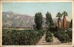 Mt. Wilson, From the Old Shore Ranch